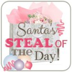 What's in Santa's Bag Today? Click on the banner to see his steal for today! Starts November 30 @ 11:30